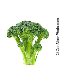 Floret of Brocolli - A floret of brocolli isolated against a...