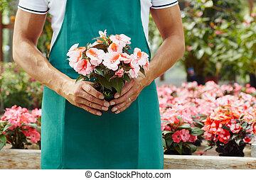 floricultor