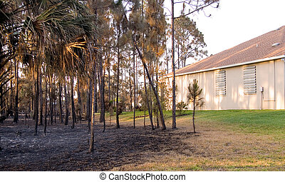 florida , αναμμένος πυρ