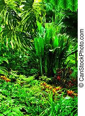 Florida Botanical Garden in Largo Florida USA