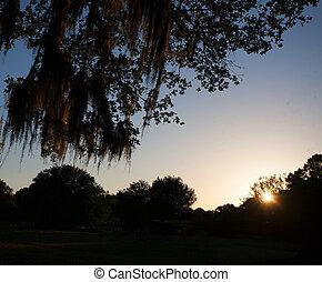 Florida dusk