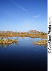 Florida Everglades - The scenic Florida Everglades, Big...