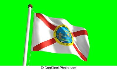 Florida flag video (seamless & green screen)