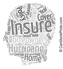 Florida Homeowners Insurance Coverage text background wordcloud concept