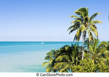 Florida Keys, Florida, USA