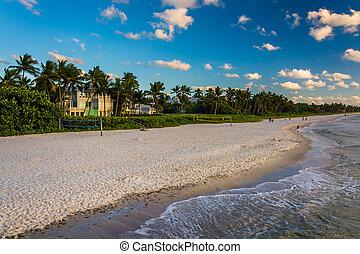 florida., móló, halászat, nápoly, tengerpart, kilátás