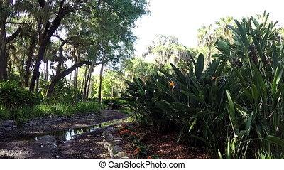 Florida natural garden