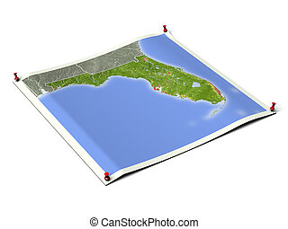 Florida on unfolded map sheet with thumbtacks. Map colored according to vegetation, with borders and major urban areas. Includes clip path for the background. Map projection: Mercator ; Geographic extents: W: -88.5; E: -79.0; S: 23.5; N: 32.0
