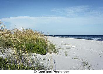 Florida Panhandle Pristine Beach with Sea Oats - Horizontal...
