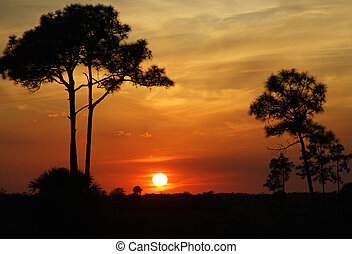Florida Sunset - The sun sets over the Florida Everglades