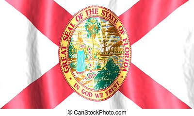 Florida US state flag looping