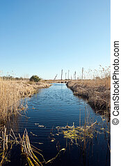 Florida Wetlands Scenic - View from a footbridge of a ...