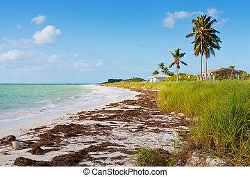 floride, plage
