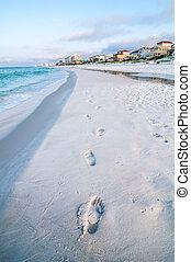 floride, scène plage