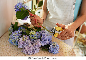 florist cuts the stems of  flowers