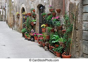 florist in Pitigliano