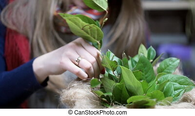 Florist Insert green twigs with leaves in a vase making...