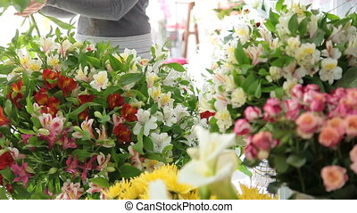Florist Shop - Large array of flowers in florist shop, in...
