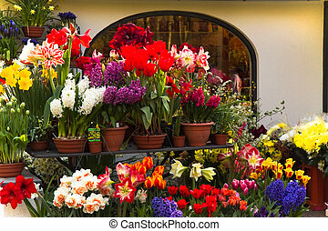 Lots of colorful spring flowers outside a florist shop