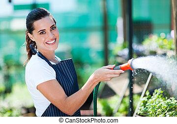 florist watering flowers in greenhouse - pretty florist...
