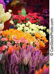 florista, lona