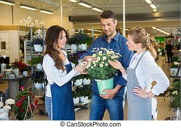 floristen, assistieren, mann, kunde, in, kaufen, blume, betriebe