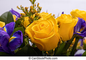 floristic, blumengebinde, rosen, schöne , blaues, gelber , ...