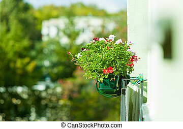 Decorative balcony flowers in pots with hanger