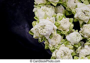 Floristry white lotus flowers in vase.