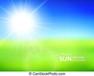 flou, champ vert, bleu, ciel, à, été, soleil