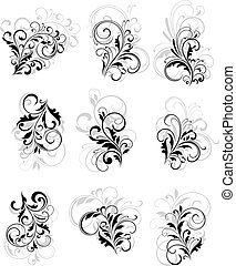 Set of flourish elements with reflection for design