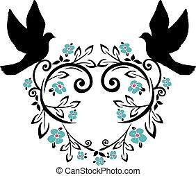 flourishes, 2, colombe