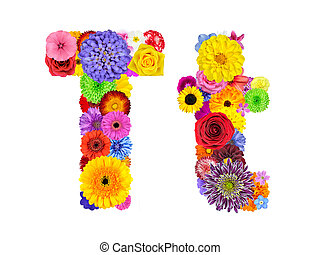Flower Alphabet Isolated on White - Letter T