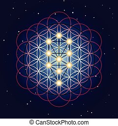Flower and Tree of Life, sacred geometry on starry sky background