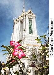 Flower and Wat Arun