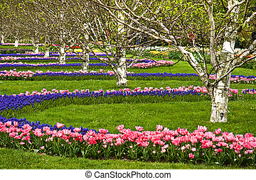 Flower arrangement park in spring