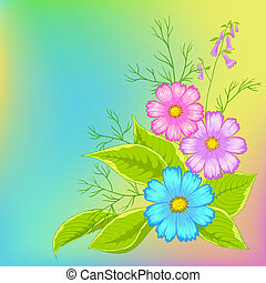 Flower background, cosmos