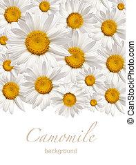 flower background