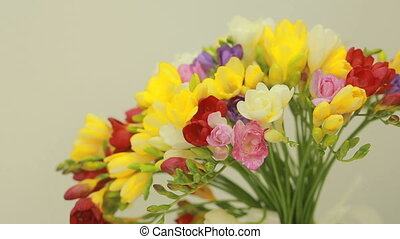 flower backgrounds, juicy, small bouquet of multicolored freesias in vase