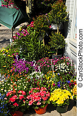 Flower baskets for sale at flower stand