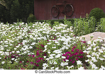 Flower Bed And Old Red Bicycle