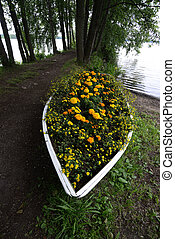 flower bed in a boat on the lake shore