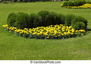 Flower bed in beautiful garden - Flower bed