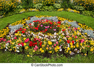 Flower bed on a summer day