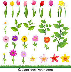Flower Borders - 8 - Collection Beautiful Flowers And Grass,...