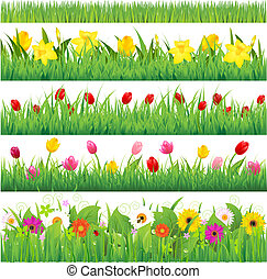 Flower Borders Set, Vector Illustration
