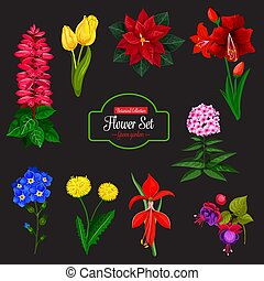 Flower bouquet cartoon icon for floral design - Flower...