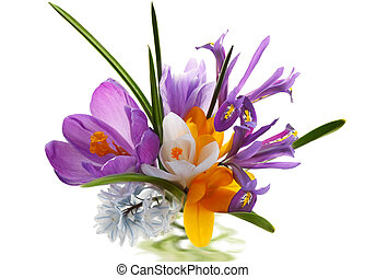 Flower Bouquet - Colorful flower bunch isolated on white...
