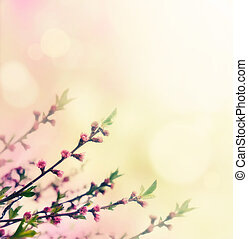 Flower buds - Flower spring background. Floral buds on pink...