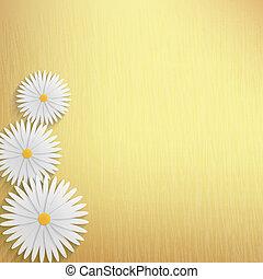 flower chamomile background